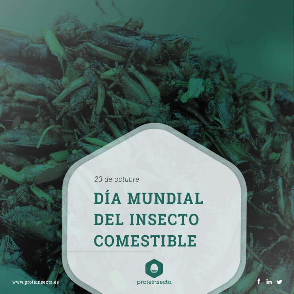 Día mundial del insecto comestible